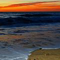 Deep Blue Sea by Dianne Cowen