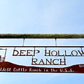 Deep Hollow Ranch by Ed Weidman