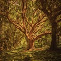 Deep In Sherwood by Sarah Kirk