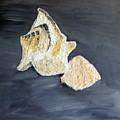 Deep Ocean Seashells by Leslye Miller