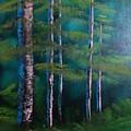 Deep Woods by Shane Stephens