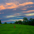 Deer And Rising Moon by Irwin Barrett