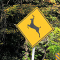 Deer Crossing Sign 2 by Jeelan Clark