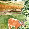 Deer Eating Leaves by Judy Swerlick
