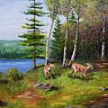 Deer Meadow by Ron Gallant