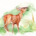 Deer Painting In Watercolor by Maria's Watercolor