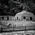 Deerfield Farm by Mark Fuller