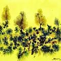 Deforestacion by Sebastian Calvo Seijas