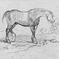 Degas, Horse.  by Granger
