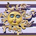 Del Sol by Shirley Anderson