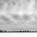 Delaware Park Winter  Meadow by Chris Bordeleau