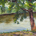 Delaware River At Washington's Crossing by Lea Novak