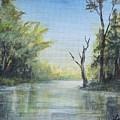 Delaware River  by Katalin Luczay