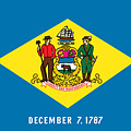 Delaware State Flag by Robert Banach