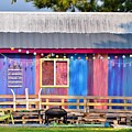 Delmarva Fun Barn by Kim Bemis
