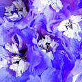Delphinium Flowers by Julia Hiebaum