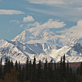 Denali In Broad Pass by Donna Quante