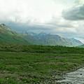 Denali National Park Landscape 2 by Douglas Barnett