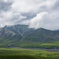 Denali National Park by Michael Ver Sprill