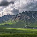 Denali National Park Pano  by Michael Ver Sprill