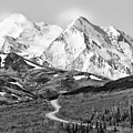 Denali - Number One by Paul Schreiber