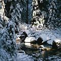 Denny Creek by John Huntsman