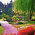 Denver Botanical Gardens 1 by Steve Ohlsen