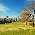 Denver City Park by Chris Anthony