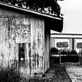Derelict Shack by Stevie Benintende