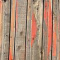 Dereliction Of Doorway by Lynda Lehmann