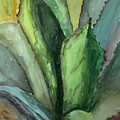 Desert Agave by Marilyn Barton