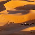 Desert And Caravan by Aivar Mikko