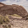 Desert Badlands by Melany Sarafis