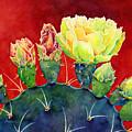 Desert Bloom 3 by Hailey E Herrera