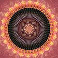 Desert Bloom Mandala by Elizabeth Alexander