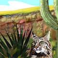 Desert Bobcat by Marie Clark