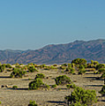 Desert Camping Panorama Austin Nevada by Lawrence S Richardson Jr