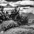 Desert Clouds by Blake Richards