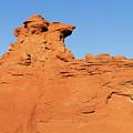Desert Dog by Tom Daniel