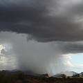 Desert Downpour by Broderick Delaney