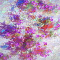 Desert Flowers Abstract 3 by Penny Lisowski