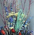 Desert Flowers by Alynne Landers