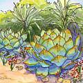Desert Gifts by Nancy Matus