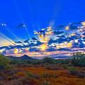 Desert Glory by Joy Elizabeth