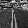 Desert Journey B/w by James Marvin Phelps
