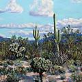 Desert Landscape by M Diane Bonaparte