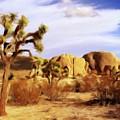 Desert Landscape by Sarah Kirk