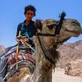 Desert Locomotion by Heiko Koehrer-Wagner