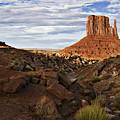 Desert Mitten by John Christopher