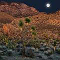 Desert Moonrise by Leland D Howard